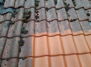 Va Cleaning And Construct - Dakreiniging & Coating